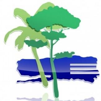Illustration du profil de GIBOUR Odile - CHI Fréjus St-Raphael